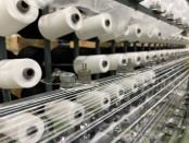 新疆綿のアパレル業界問題